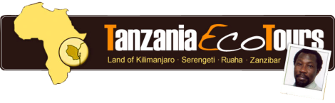 tanzaniaecotours